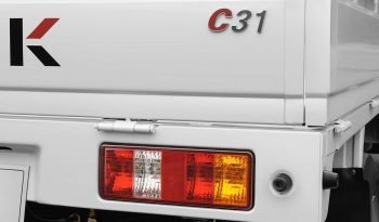 Mini truck C31 lleno