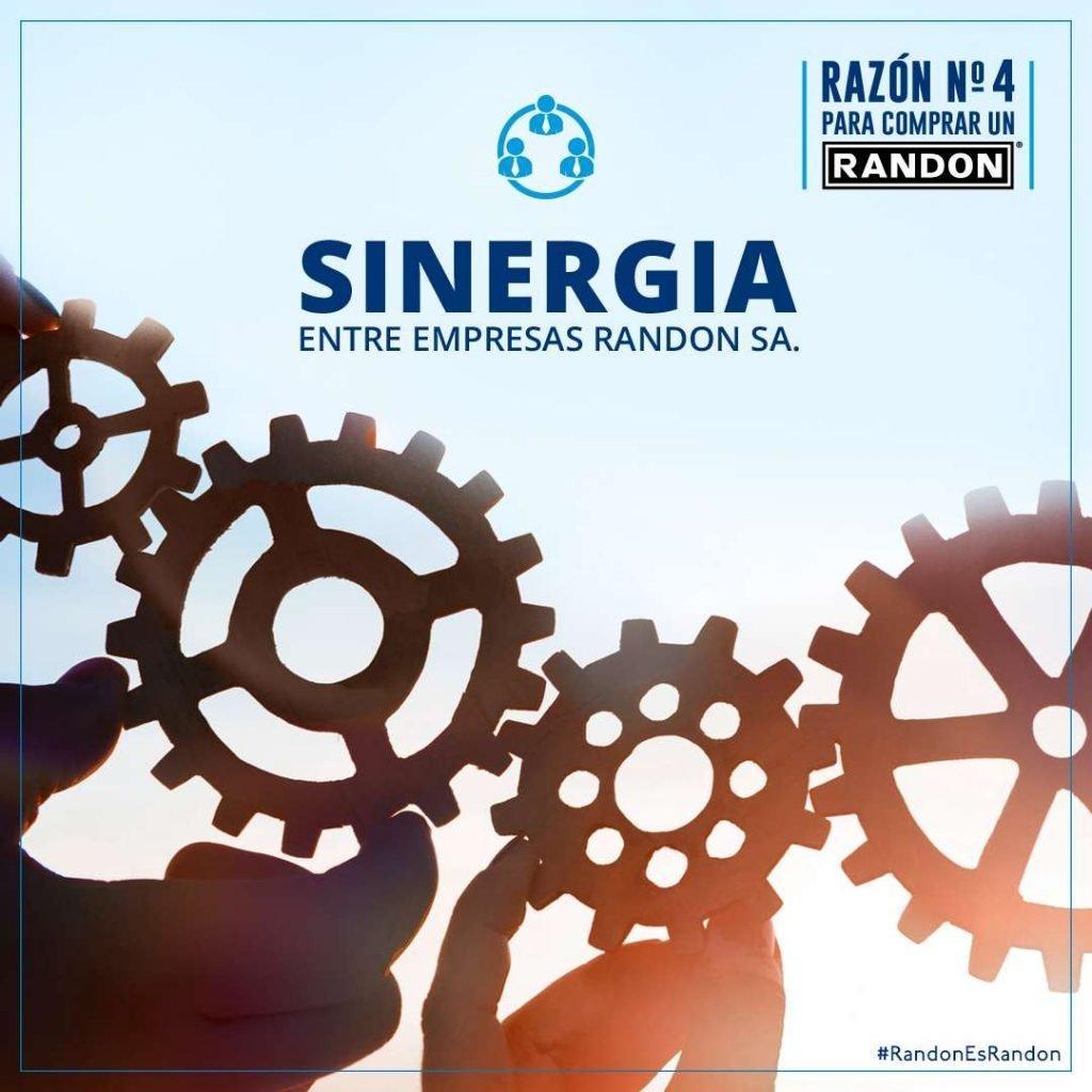 Razón 4: Sinergia entre empresas de Randon SA.